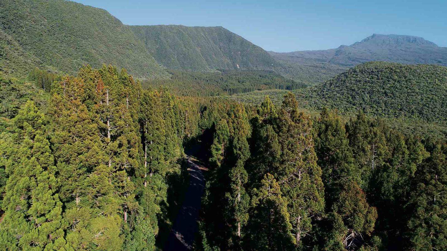 Les Pitons Cirques Et Remparts De La Réunion Au Patrimoine Mondial
