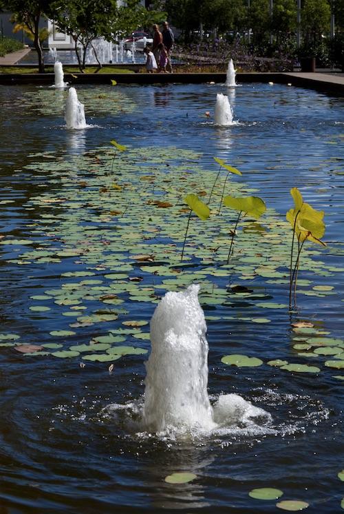 Jardin de l 39 etat carte de la r union - Bassin plastique preforme saint denis ...